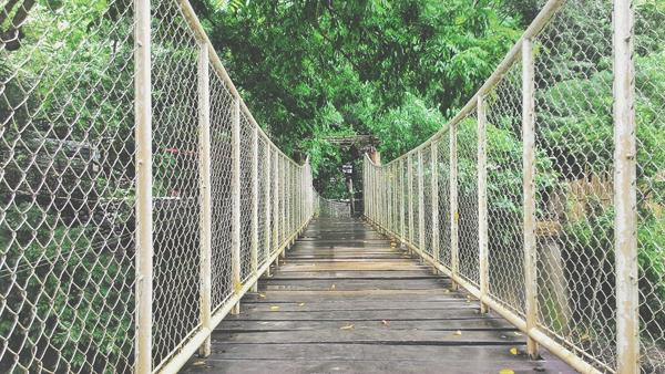 Bridge to the falls