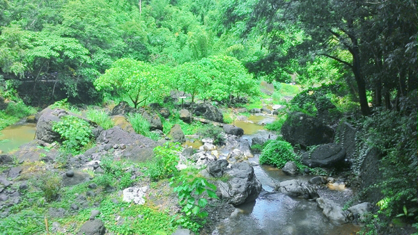 The river that the bridge crosses
