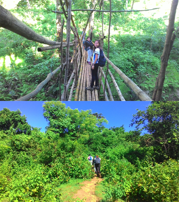 The bamboo bridge at the start of the trail; Entering the forest