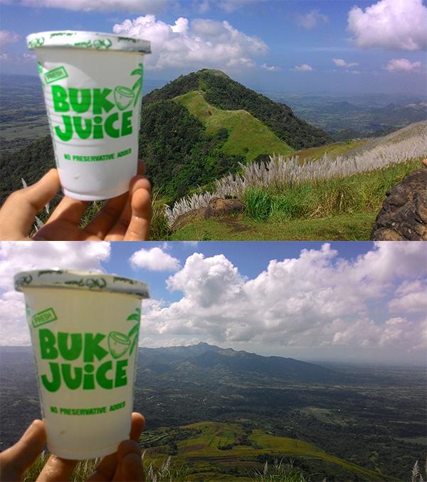Buko for Apayang; Buko for Batulao