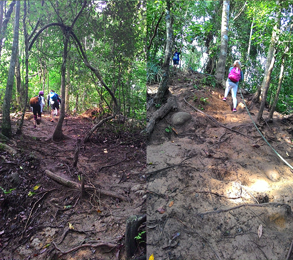 After the brook, it was a steady ascent up muddy slopes