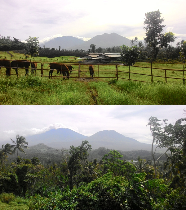 The constant view of the mountains Cristobal and Banahaw were my inspiration to keep going