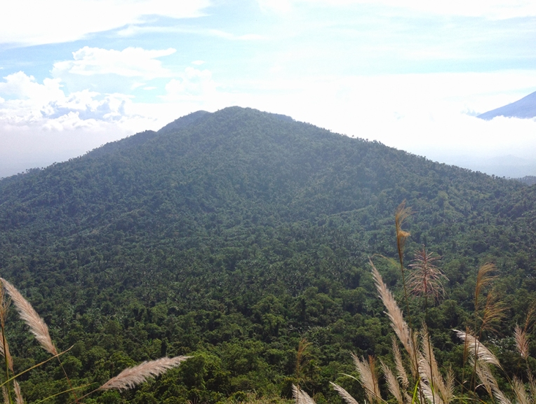 Mt. Atimla as seen from the trail going up Mt. Kalisungan