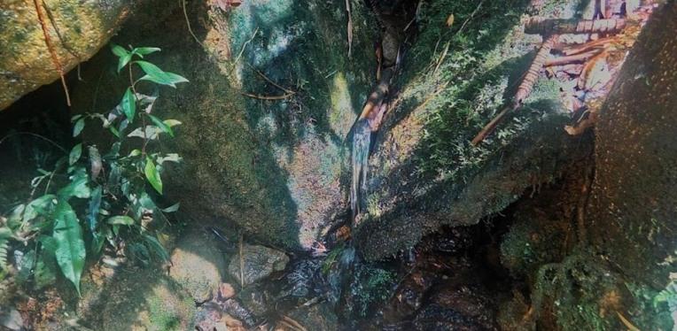 The natural water source at KM6