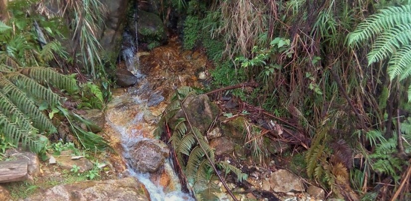 A much bigger water source at KM10